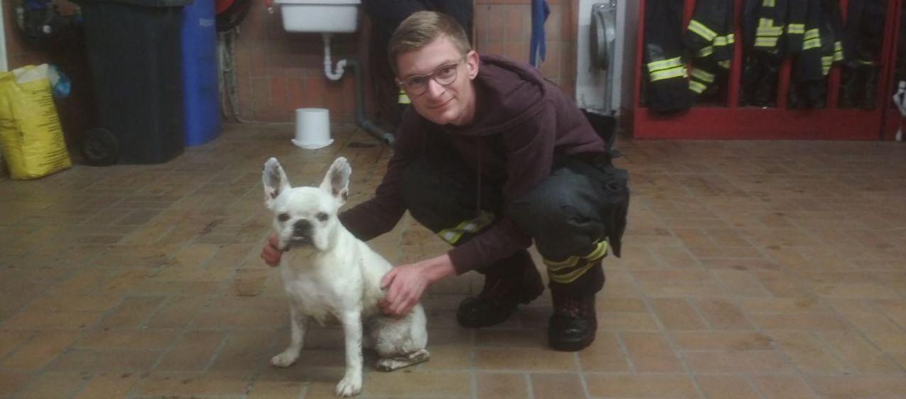 Orkan Sabine 2020 - Feuerwehrmann mit Bulldogge Amigo